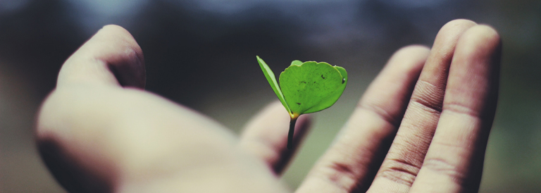 Purpose of Life (زندگی کا مقصد اور اُس کا حصول)