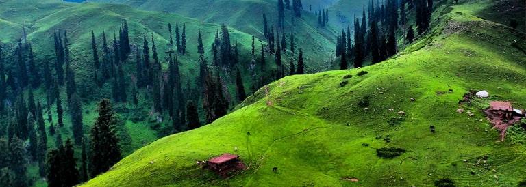 Towards a Green Pakistan: A Behavioral Approach